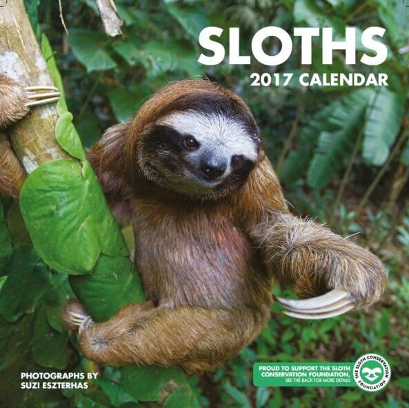 slothcalendar1