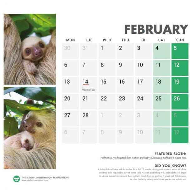 slothcalendar2-1