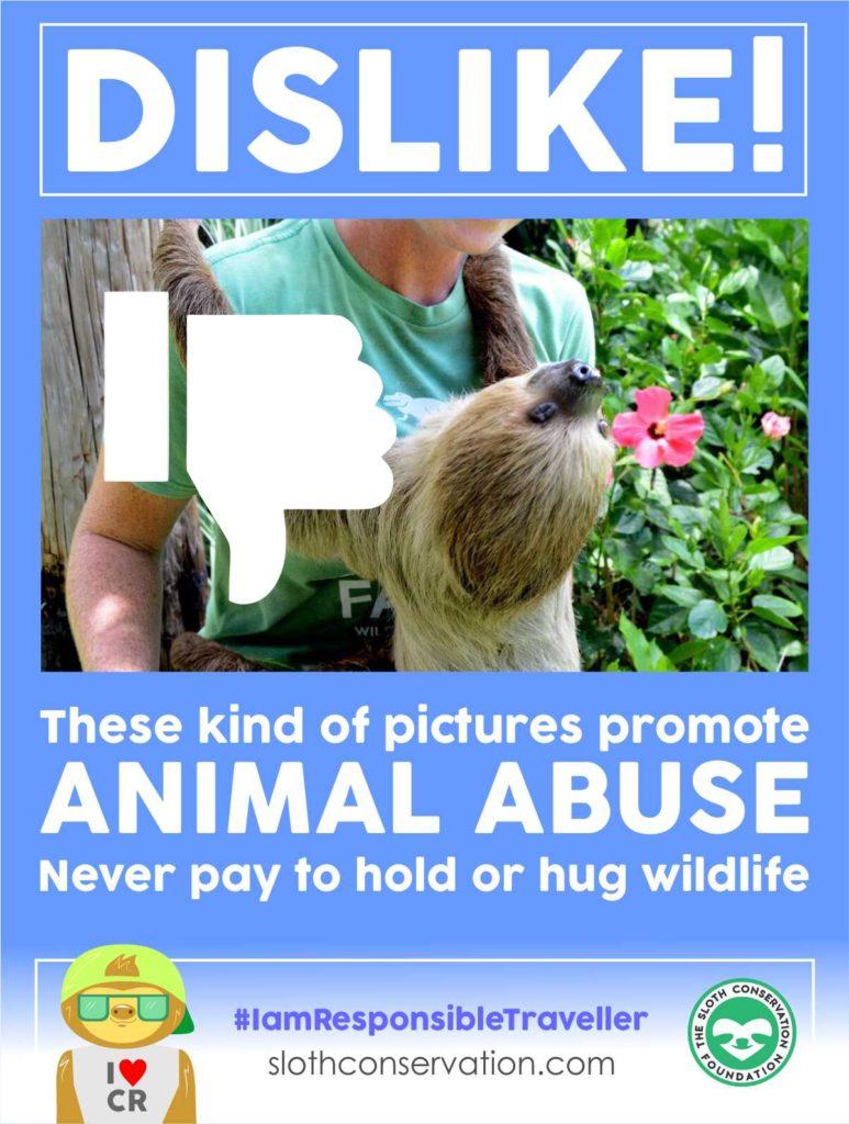 dislike animal abuse