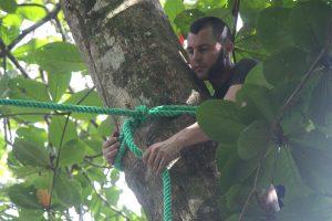 Installing a new Sloth Crossing canopy bridge