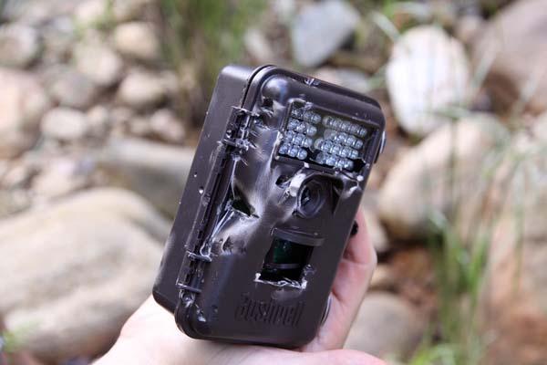 mathews-damaged-camera-trap