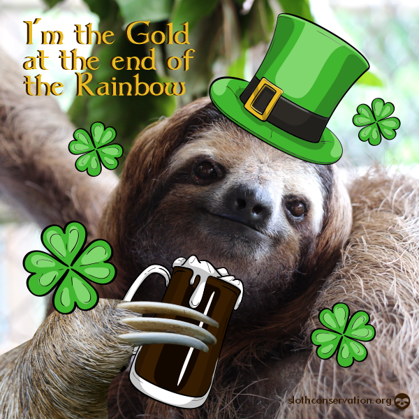 17 march st patrick´s day