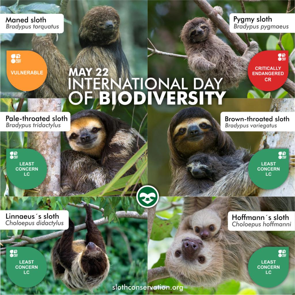 biodiversity day may