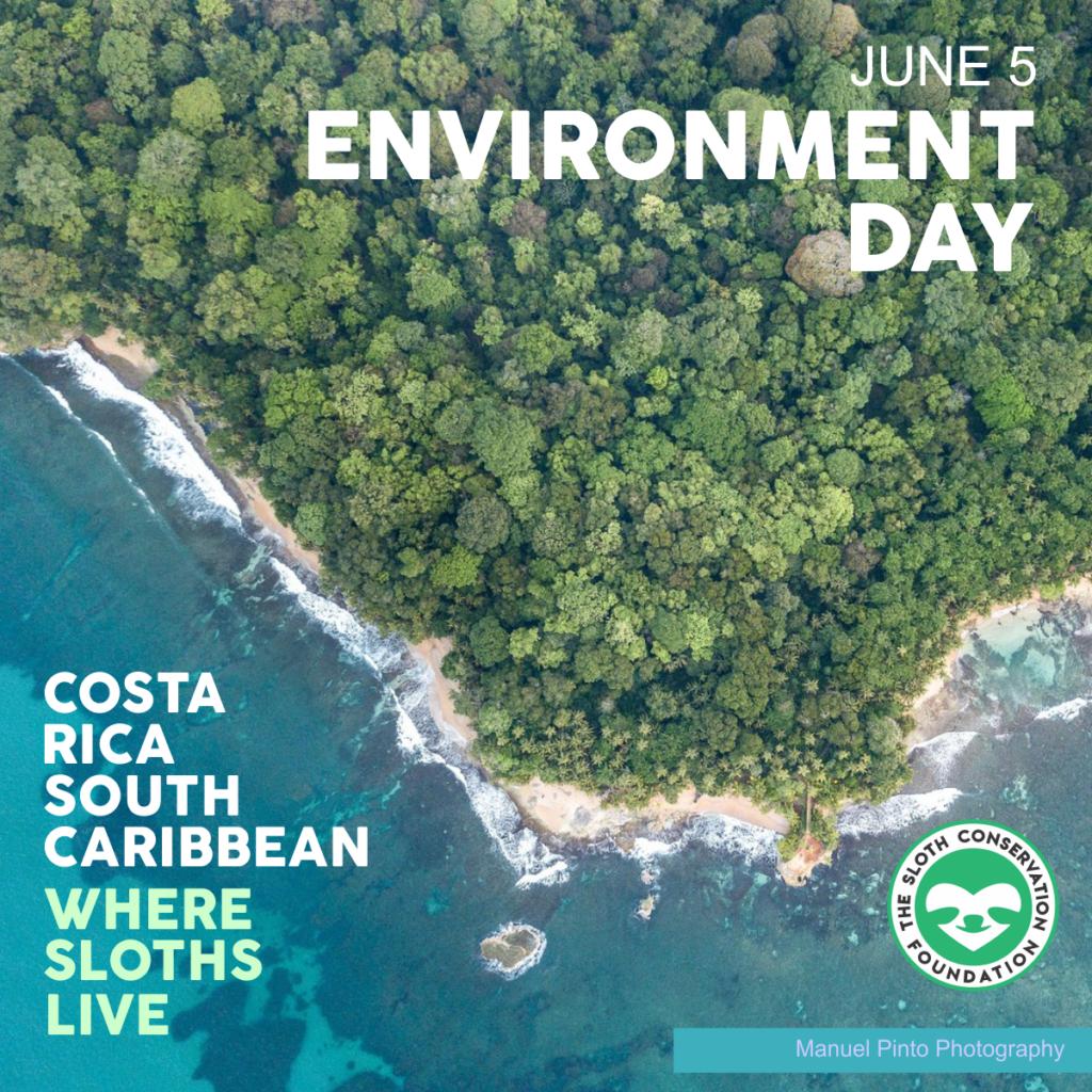 environmental day june