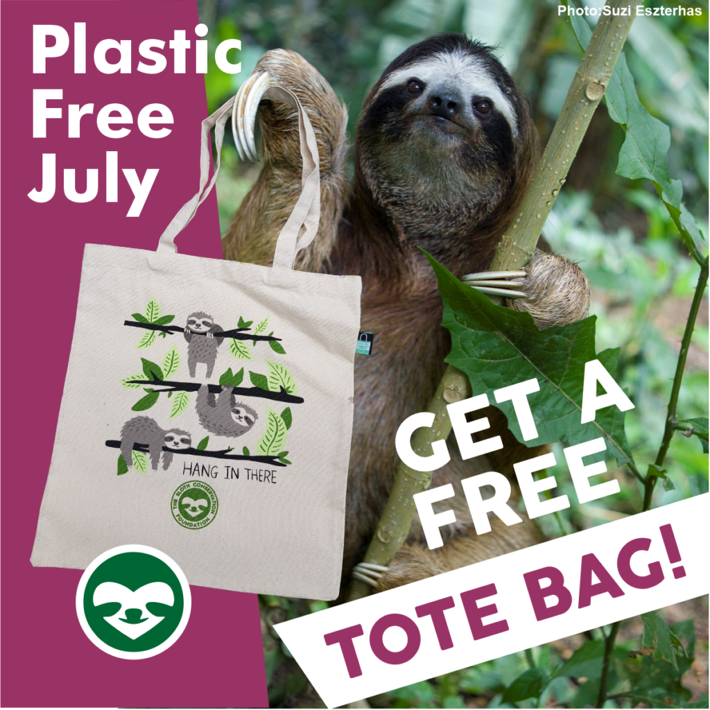 june news july plastic free
