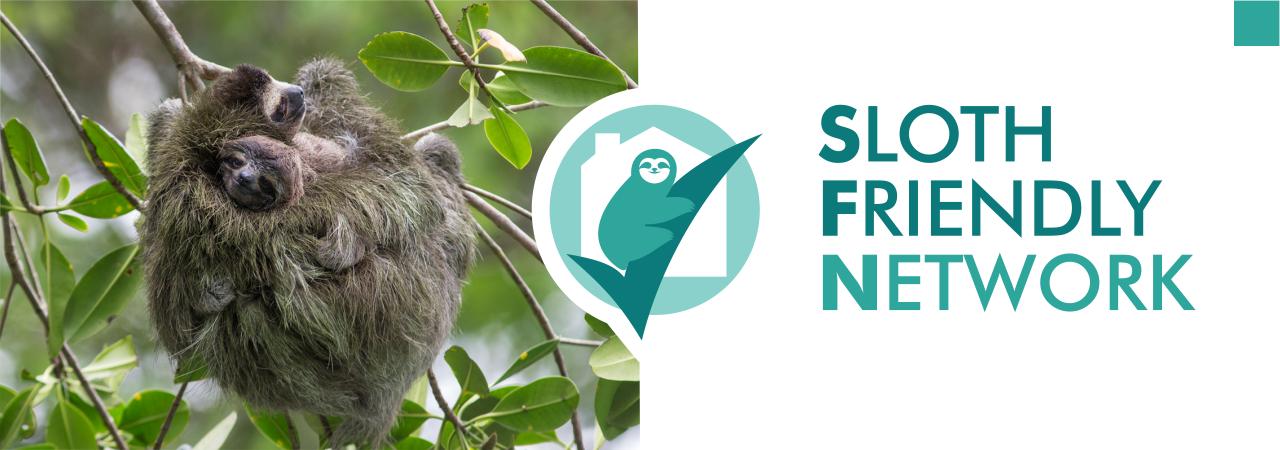 sloth friendly network