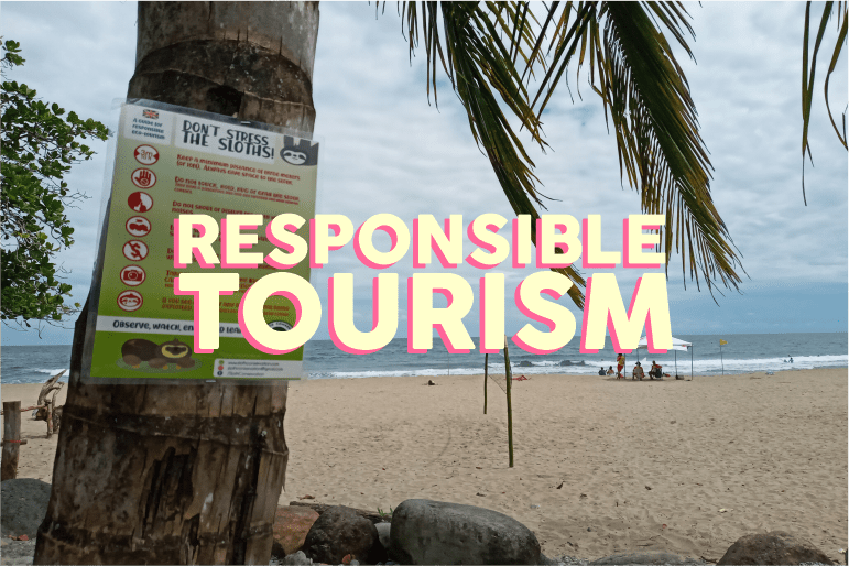 responsible sloth tourism